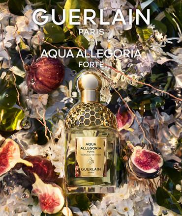 Fragrances pour femme